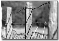 On the fence: A barbed wire fence marks the boundary of the James Ranch along Highway 550 north of Durango./Photo by Dustin Bradford