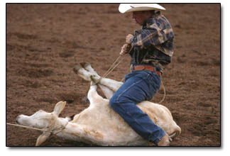 A calf loses the battle during the tie down roping competition sponsored by Frontier Buckles.