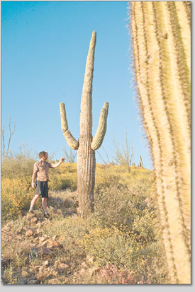 Victor Longinotti tries unsuccessfully to shake hands with a saguaro cactus after a long day on a raft.