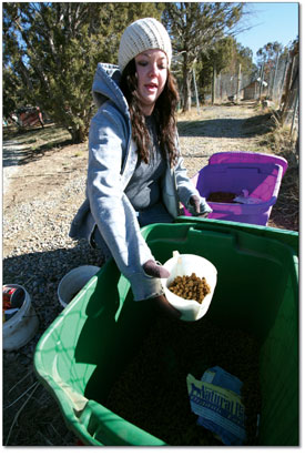 Volunteer Hailey Matney makes the morning dog food rounds.